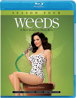 Weeds: Season Four - DVD - used