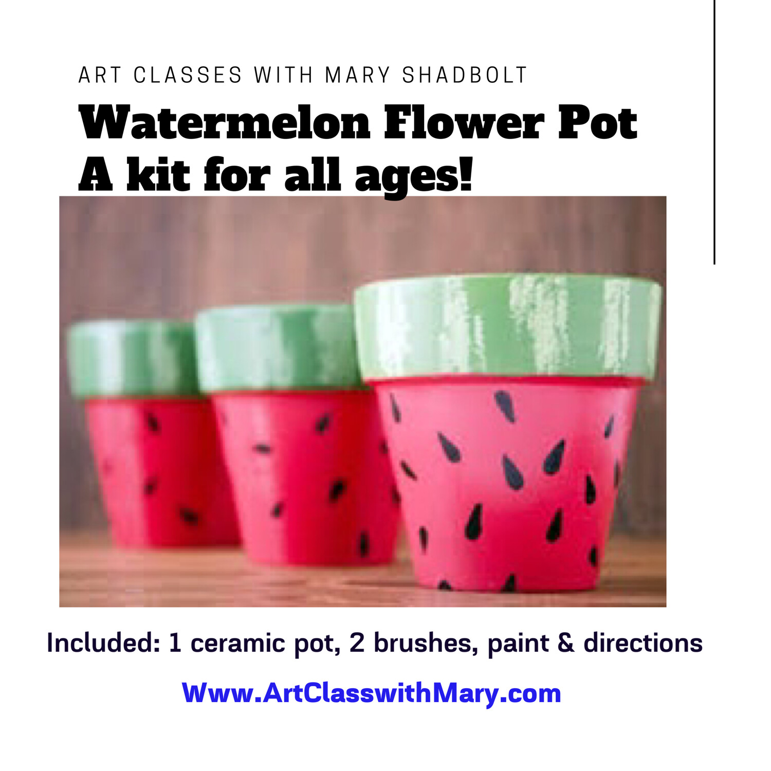 A Watermelon Flower Pot kit