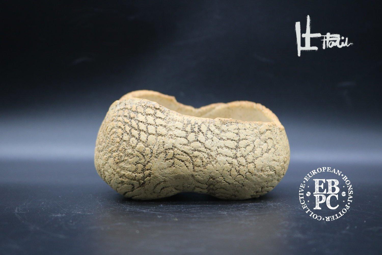 SOLD - Holvila - 'Dragonskin'; 11.7cm; rectangle; shohin; textured finish