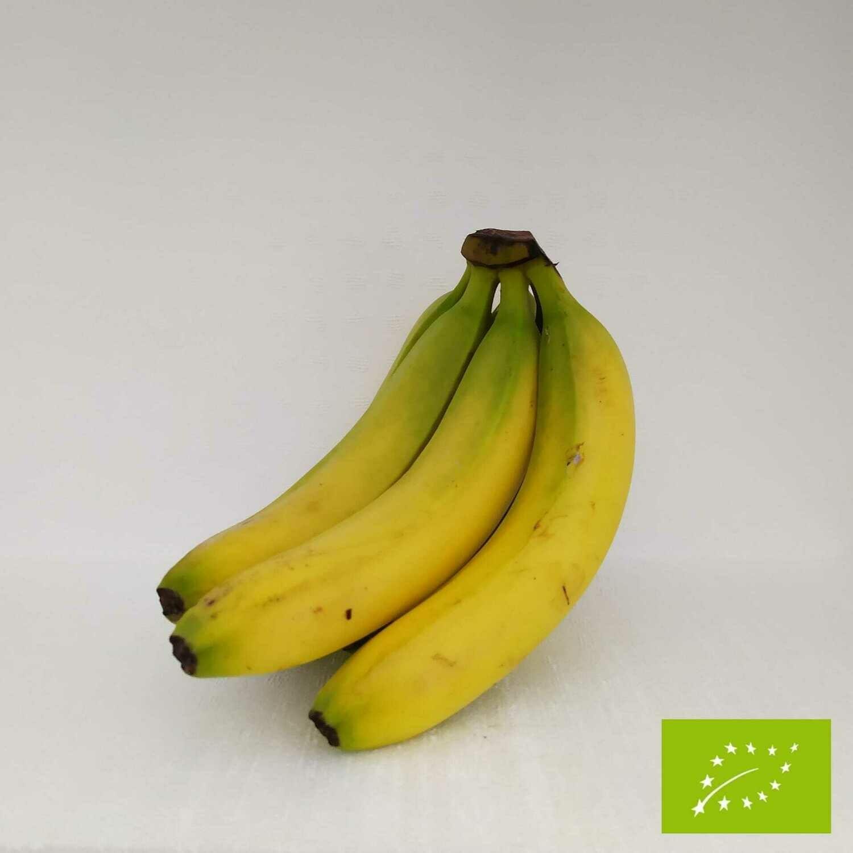 Banane EQUO BIO