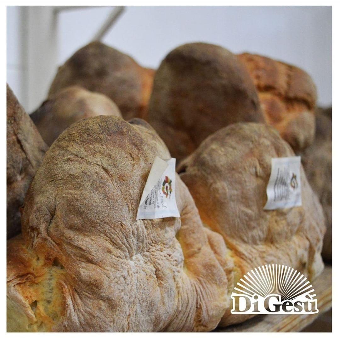"""Pane di Semola Rimacinata """"Senatore Cappelli""""  SLOW FOOD"""