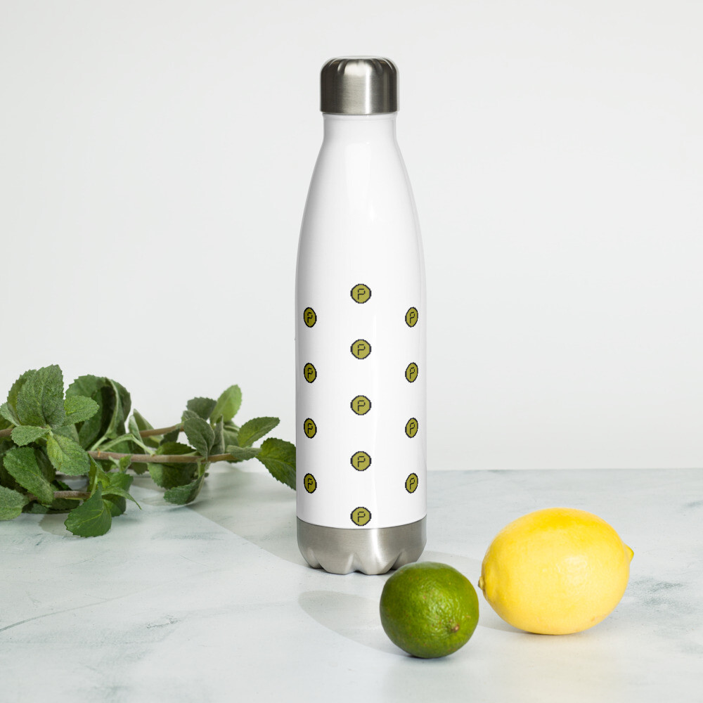 Pirate Chain Stainless Steel Water Bottle