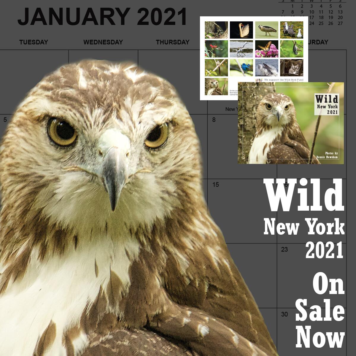 Wild New York Calendar 2021