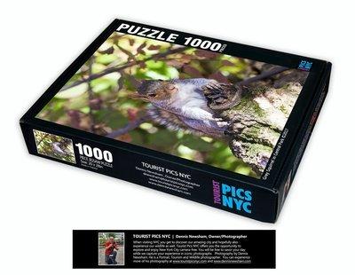 Squirrel Puzzle