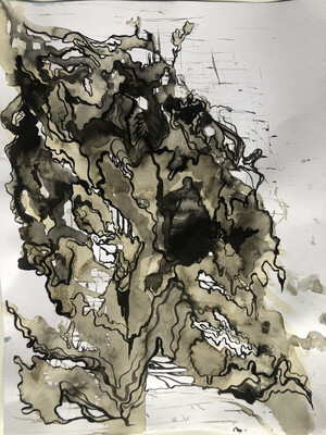 India ink and tea on water colored paper
