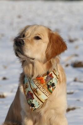 Bandana for Dogs