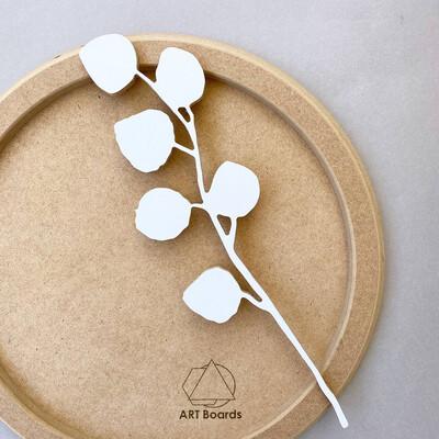 Веточка эвкалипта с круглыми листочками