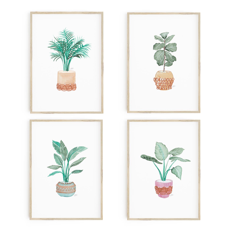 House Plant Print 5x7 Card Set (4 Cards)