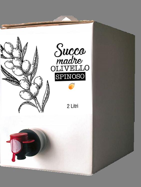 Succo madre di olivello spinoso - Biologico - 2 l