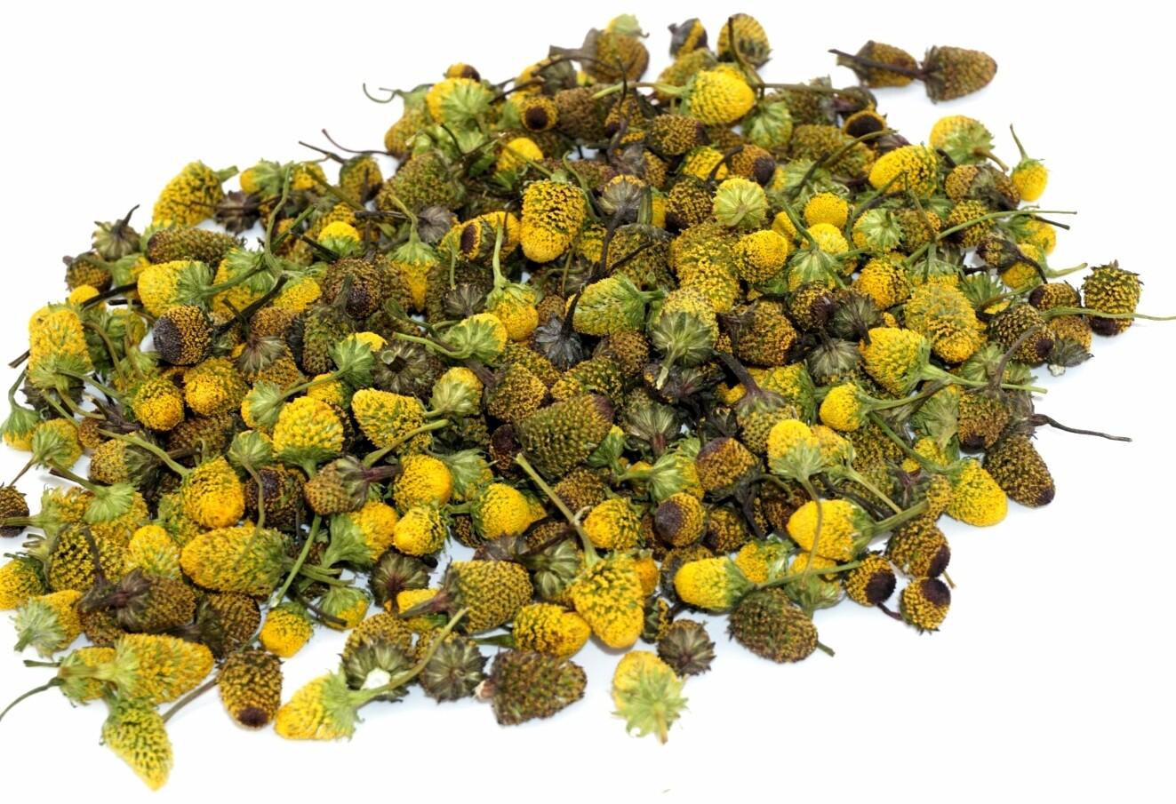 Dried Bulk Buzz Button Flowers
