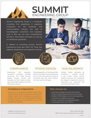 Summit Engineering Group Consulting Flyers (Qty. 500)
