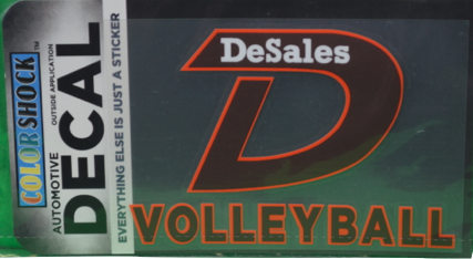 """D"" Volleyball Decal -616"