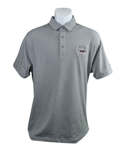UA Men's Grey Chrg Cotton Polo