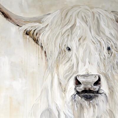 """""""Samson"""" Highland Bull"""