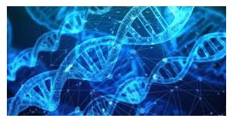 https://CRISPR-biotechnology.com