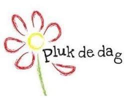 https://pluk-de-dag.nl