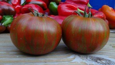 Vintage Wine Tomato