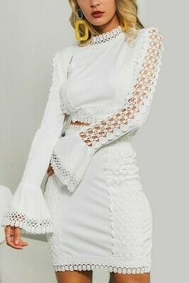 Skirts   Crochet-Lace Bodycon Mini Skirt Set