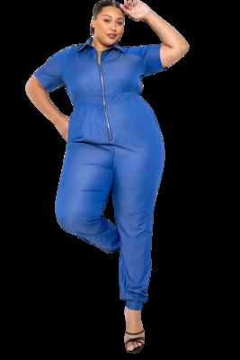 Pants  Zip up Denim Jumpsuit