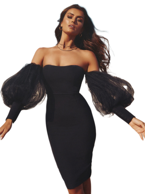 Dresses| Sexy Off the Shoulder Black Mesh Dress