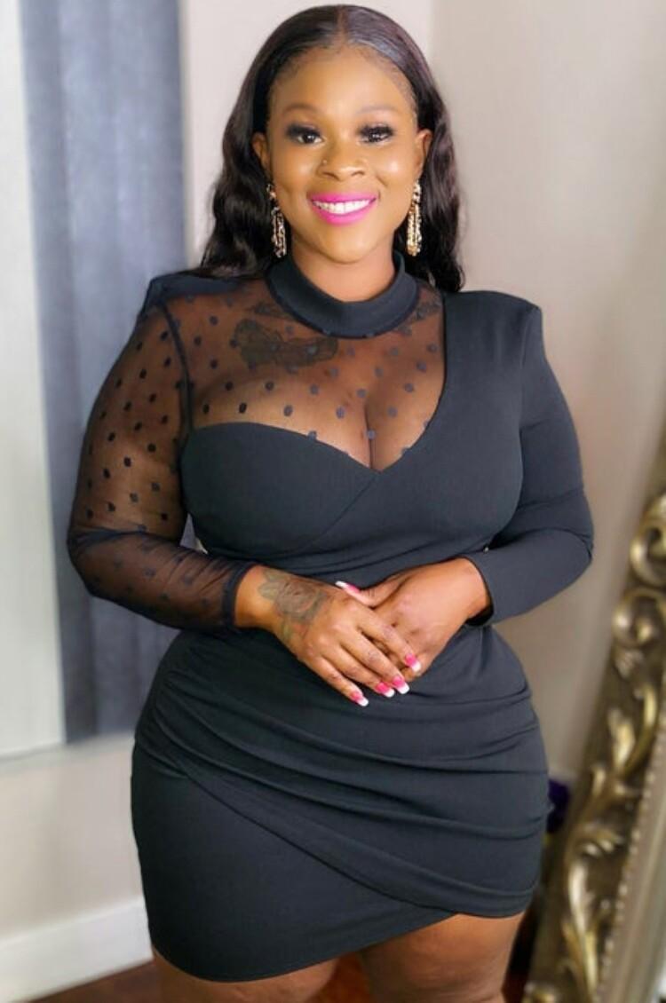 Style Drops Plus Size Black Mesh Dress