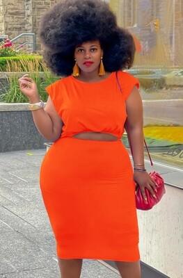 Style Drops| Plus Size 2pc Crop Top Midi Skirt Set