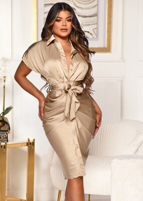 Style Drops| Diva Blouse Dress