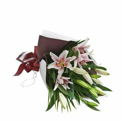 Lily Wrap in Pink or White