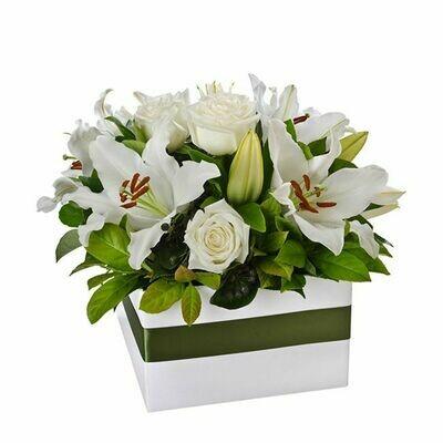 Elegant White Box