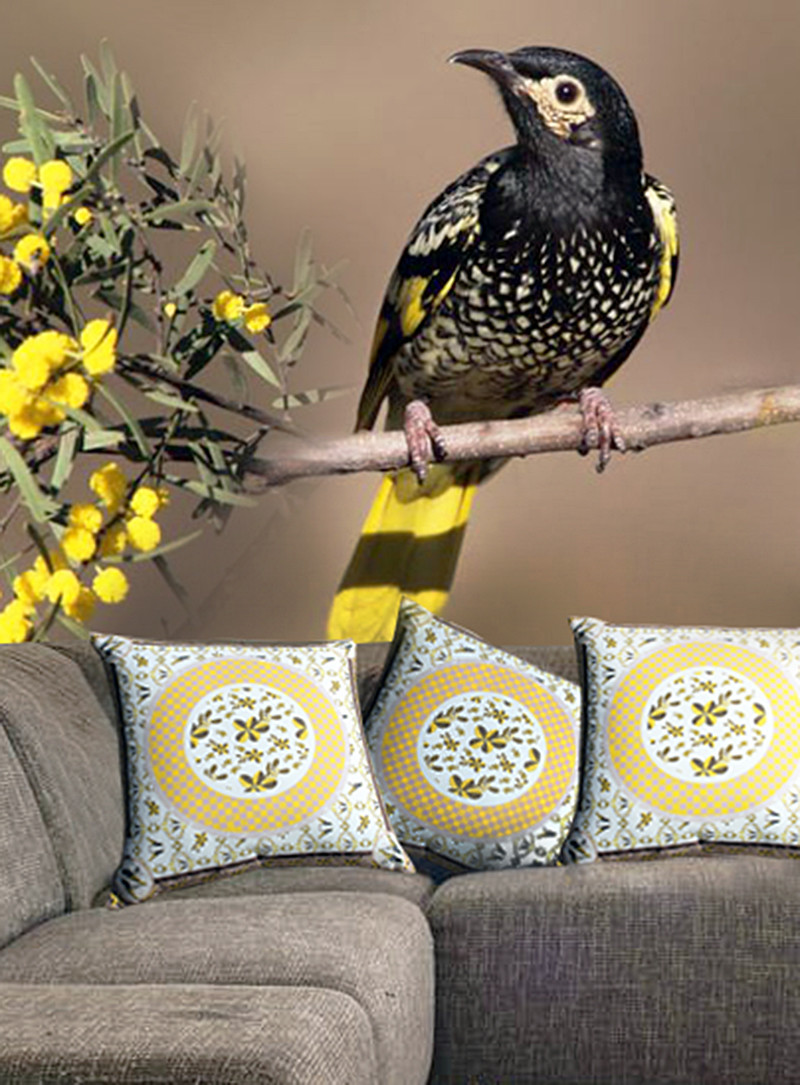 Regent Honeyeater Cushion Cover