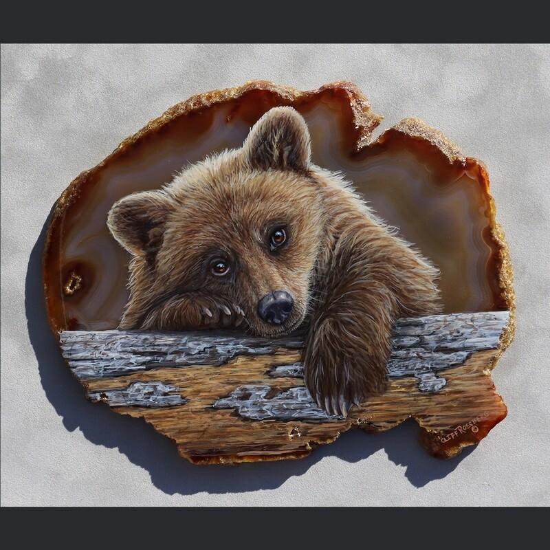 DayDreamer- Griz Cub