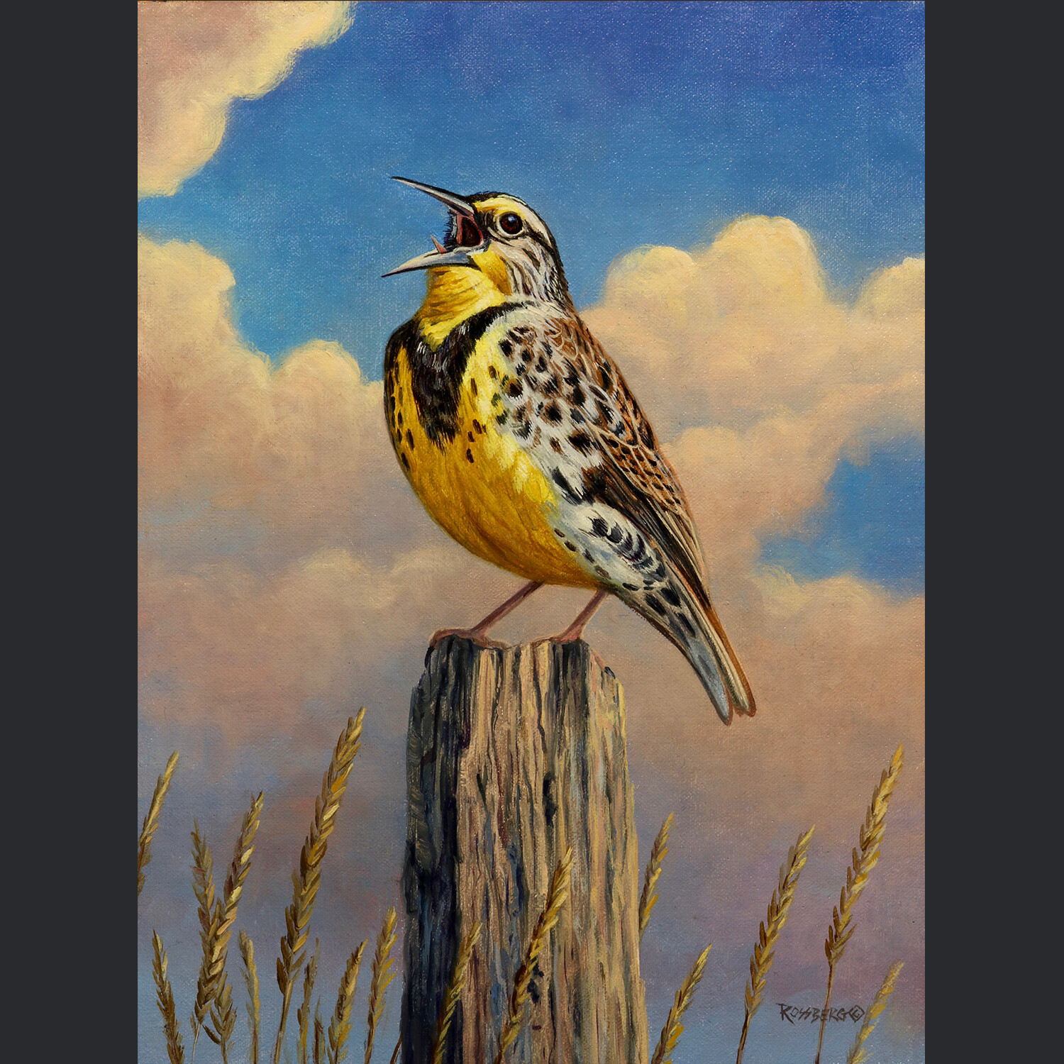 Meadowlark Melodies