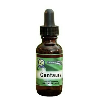 Centaury Flower Essence