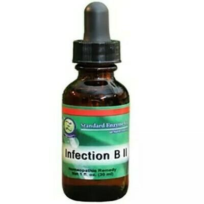 Infection B II
