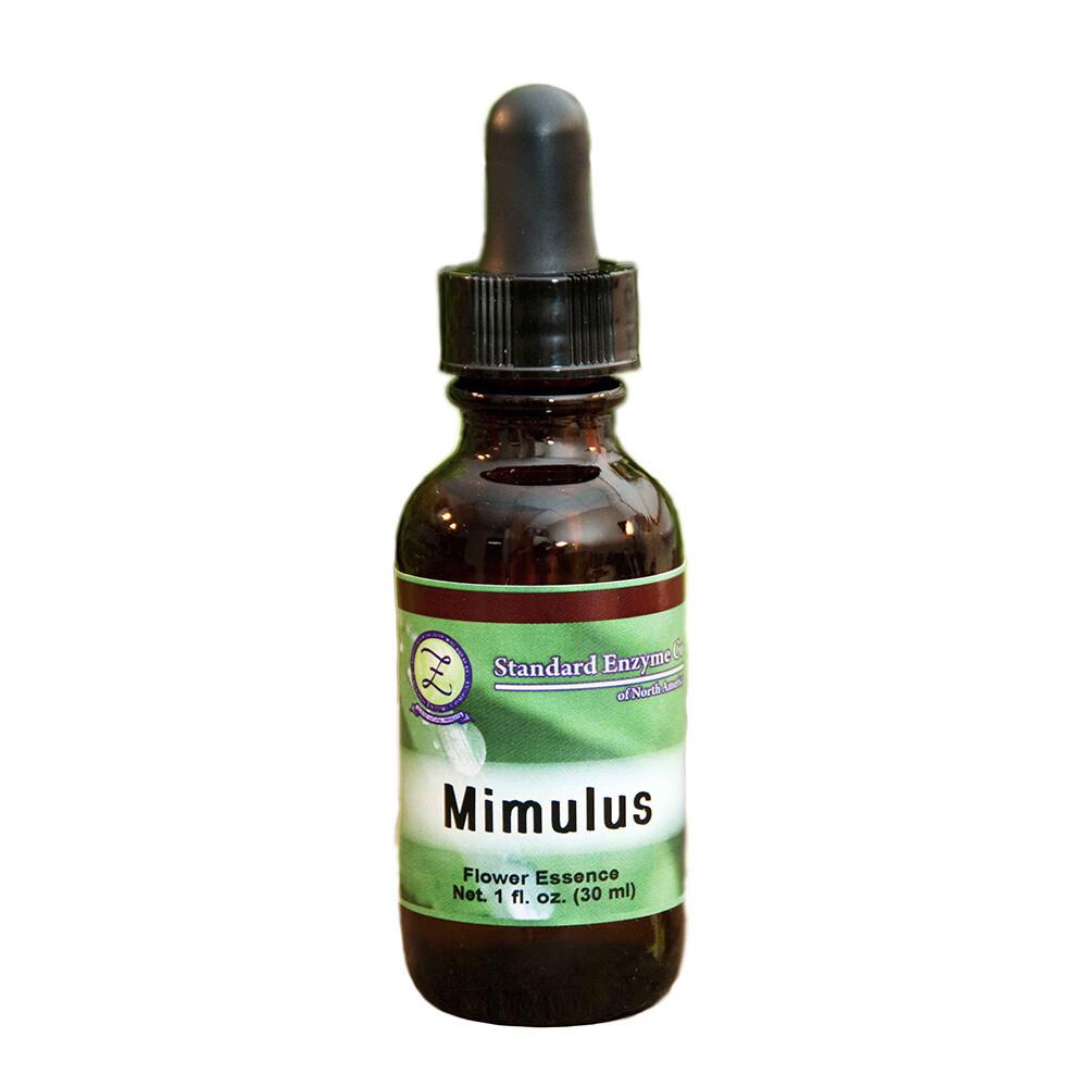 Mimulus Flower Essence 1oz