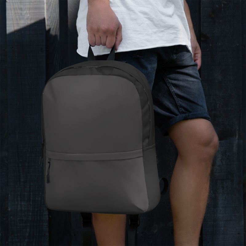 A.M Grey Two-Tone Backpack