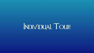 Individual Tour