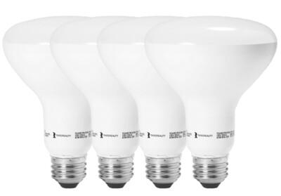 Third Reality Smart LED Light Bulbs BR30 (4 pack)