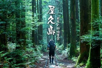 【日本】精靈的呼喚 神秘之森屋久島探秘登山 ( 7天6夜 )