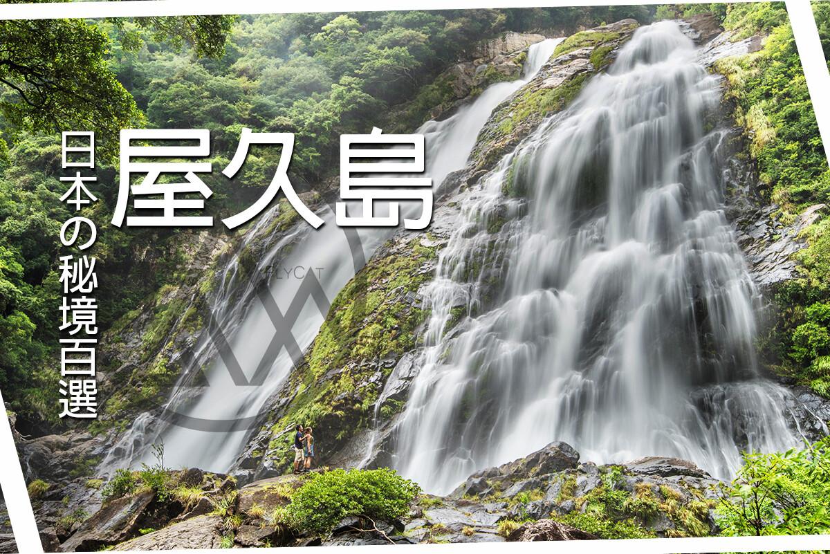 【日本】水與森林的魔法 - 屋久島輕徒步團 ( 5天4夜 )