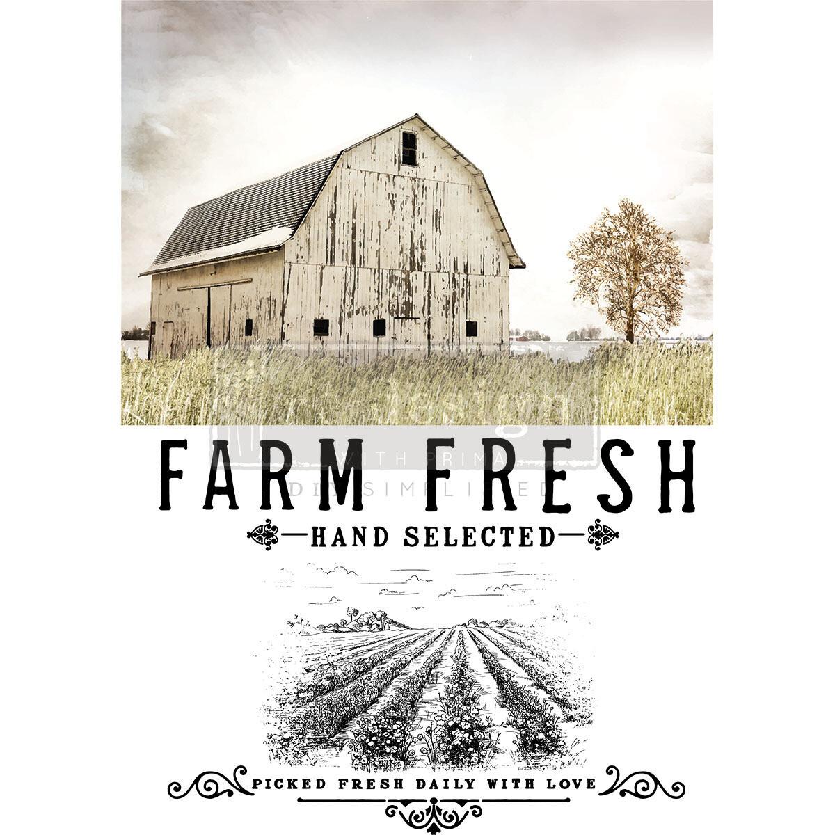 THE FARM LIFE #651411