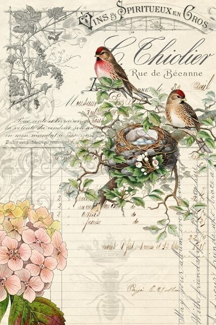 ROYCYCLED BIRD EPHERMERA #3