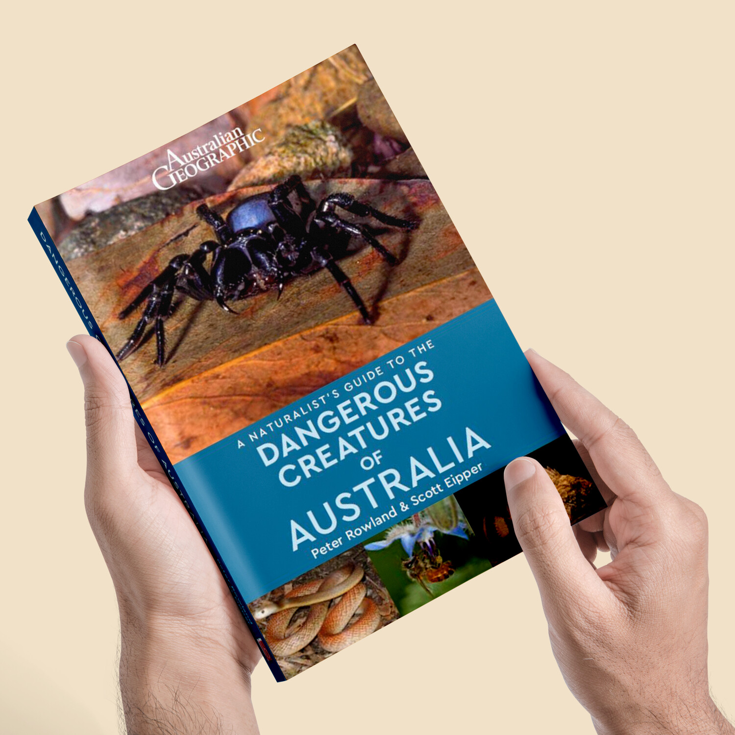 A Naturalist's Guide to the Dangerous Creatures of Australia