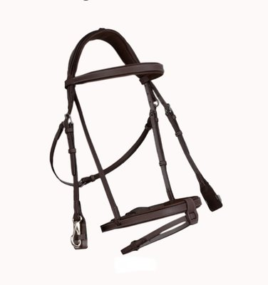 French Noseband Training Bridle