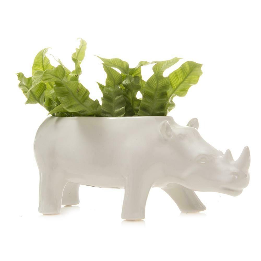 Rhino  Planter