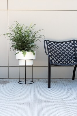Moa Plant Stand