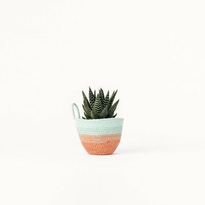 MOkun Terracotta and Seafoam Mini Planter