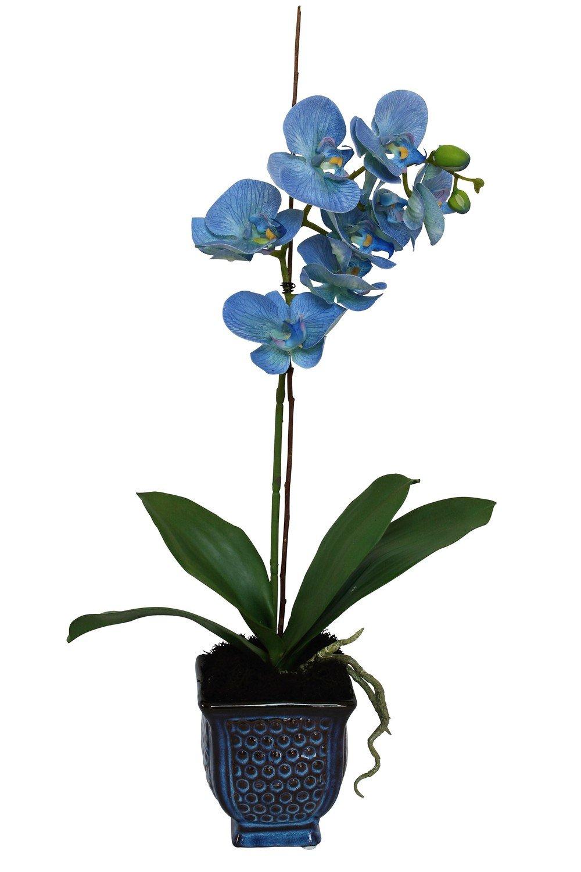 Lapis Blue Artificial Phalaenopsis Orchid