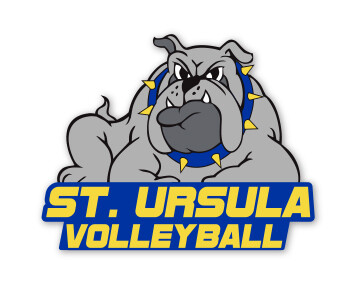 Decal - 6 x 7 - Volleyball
