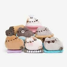 Pusheen Blind Box 3rd Series